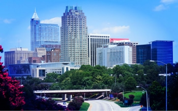 Raleigh Landscape On The Map Marketing