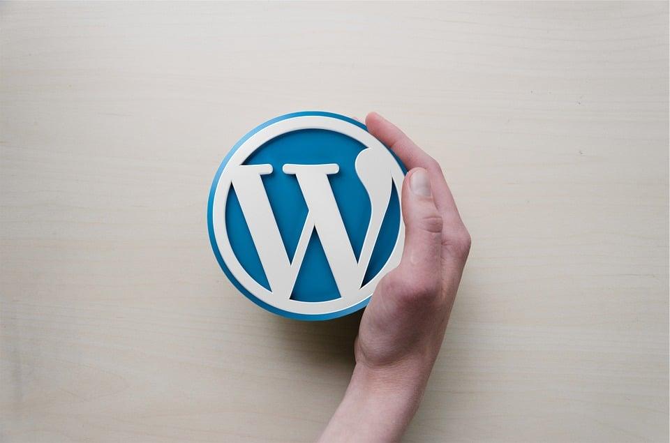 Safeguarding WordPress