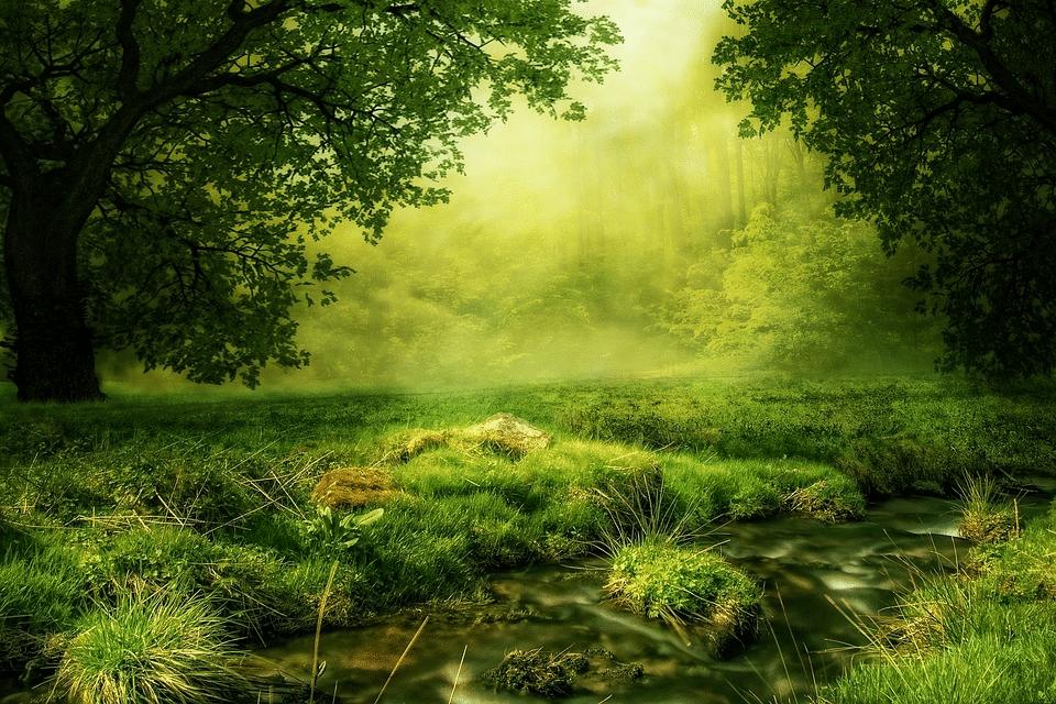 green in web design